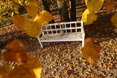 Indian Summer, which Russians call Old Ladies' Summer, is a very beautiful but very short season in Russia. <br />Photo: A bench in Alexander Pushkin's Petrovskoye estate, the Pskov Region.