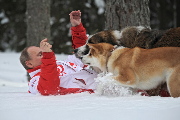 Russian President Vladimir Putin romps with his dogs Buffy and Yume on a walk in the Moscow Region.