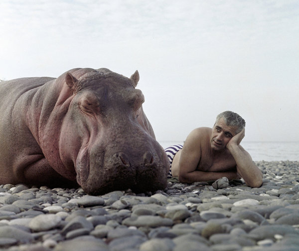 Animal trainer Stepan Isaakyan with Toshka the hippo on the shore of the Black Sea. (1967)